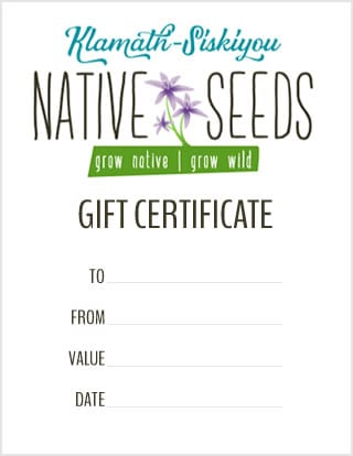 give the gift of native wildflowers