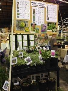Spring Garden Fair-KSNS Booth