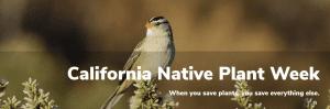 California Native Plant Week